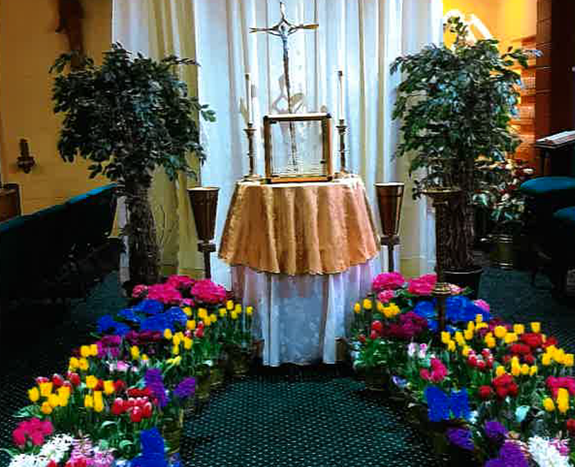 Flowers for Our Blessed Easter Season