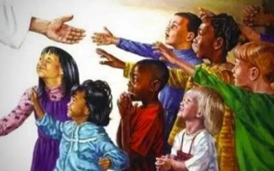 St. Francis Religious Education News
